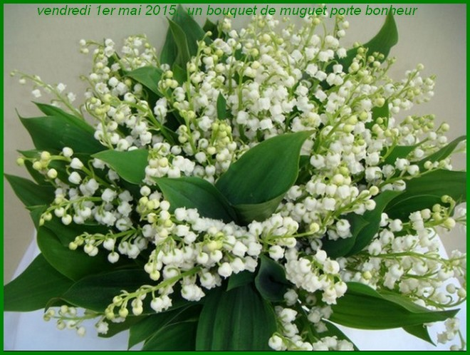 http://www.dieupentale.com/forum/uploads/2063_muguet_porte_bonheur.jpg