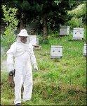 http://www.dieupentale.com/forum/uploads/thumbs/2063_apiculteur.jpg