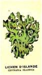 http://www.dieupentale.com/forum/uploads/thumbs/2063_lichen.jpg