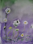 http://www.dieupentale.com/forum/uploads/thumbs/6_011_aquarelle_serie_florale_de_m-f_begue.jpg