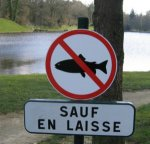http://www.dieupentale.com/forum/uploads/thumbs/6_le_poisson_du_lac.jpg